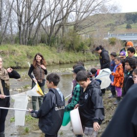Freshwater Workshop teaching local community groups how to monitor their local waterways